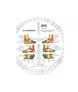 Roulette de réflexologie