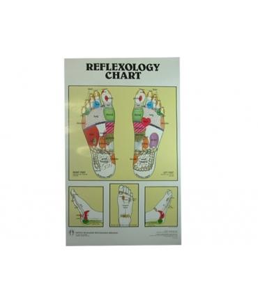 Carte réflexologique
